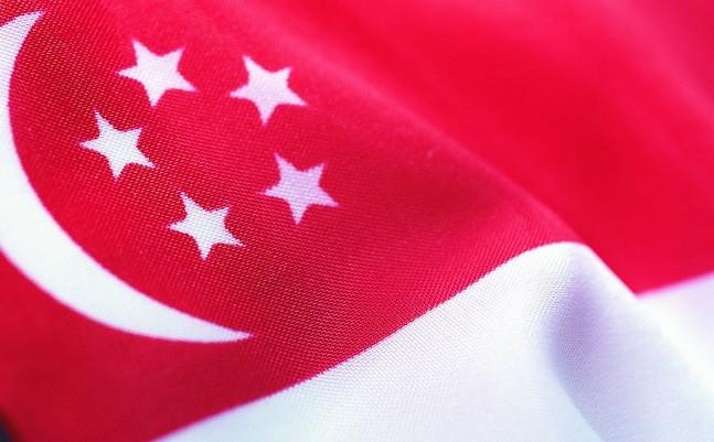 新加坡国旗由红,白两个平行相等的长方形组成