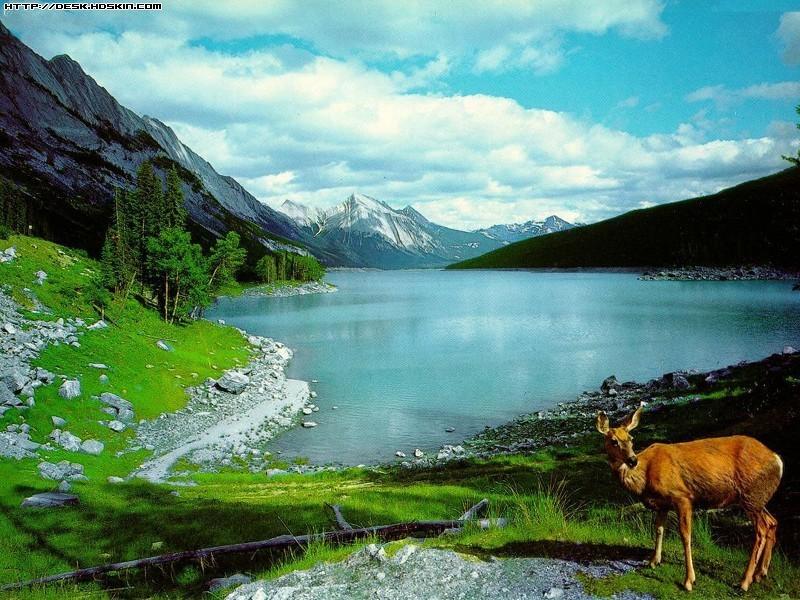 天山湖泊宽幅风景