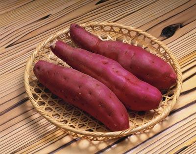 白薯手工制作小动物