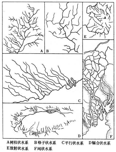 常见的水系形状有:①树枝状水系.