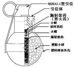 皮肤结构结构模式图