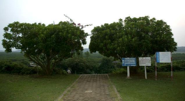 山口红树林生态自然保护区