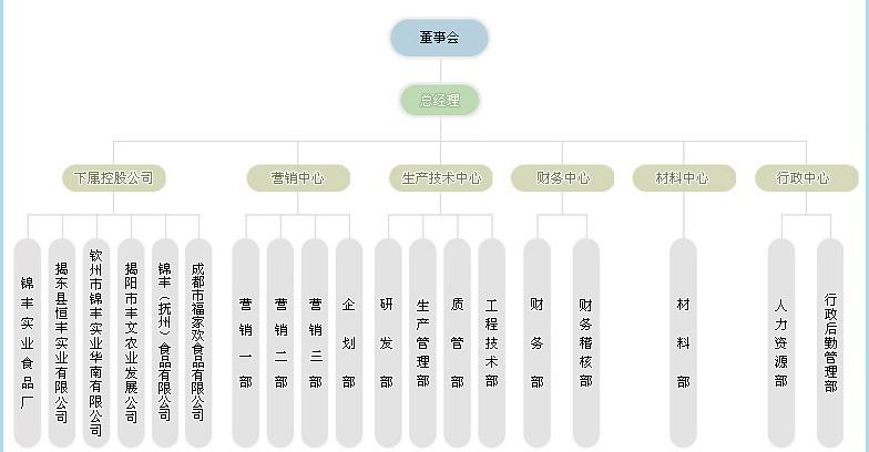公司的结构框架