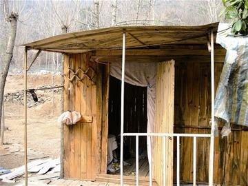张芝伟的小木屋