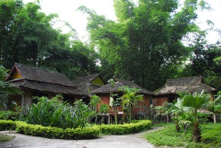 主要景观景点有:热带原始森林,独树成林,密林,望塔,森林动物园,橡胶