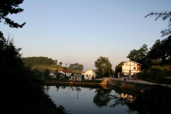 济源市坡头镇毛岭村总人口数_济源市坡头镇图片