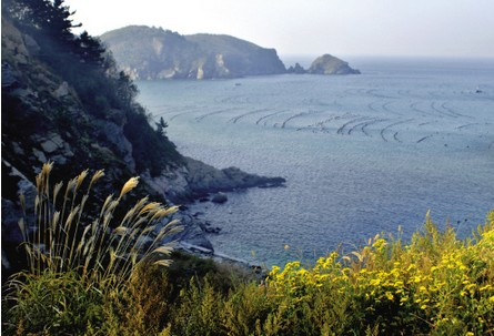 里岛 [1]位于辽宁省大连市长海县大长山岛南3