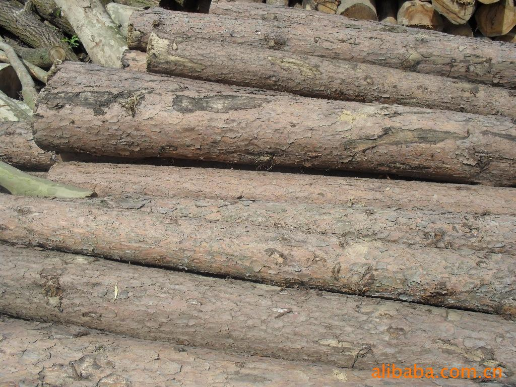 ③材积计算:采用沙捞越森林处制定的原木材积表查定