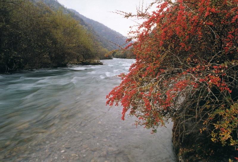 王朗自然保护区_360百科
