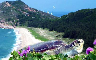 海龟自然保护区_360百科