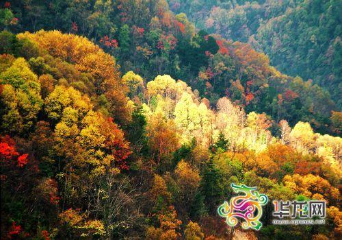 山(体验原始森林,观高山日出,赏日月奇雾,品味草原风情,亲近野生动物